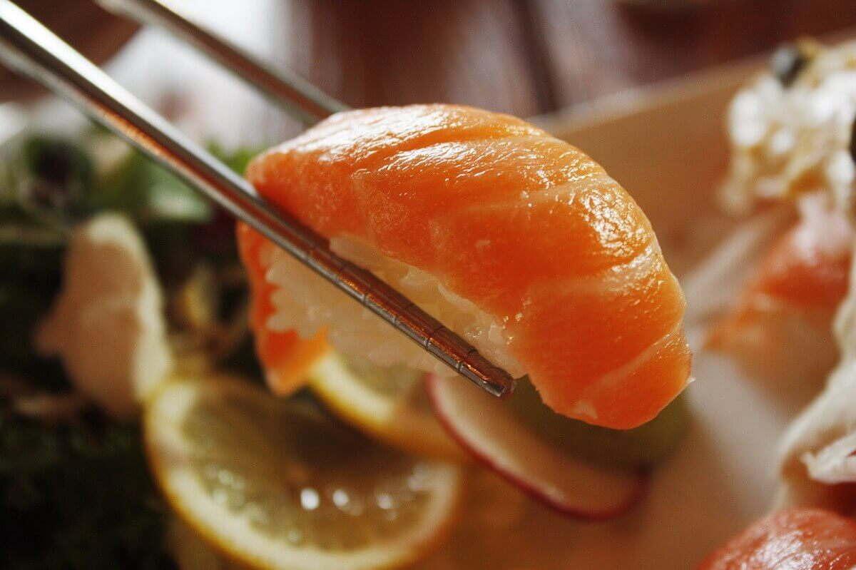 연어 생선