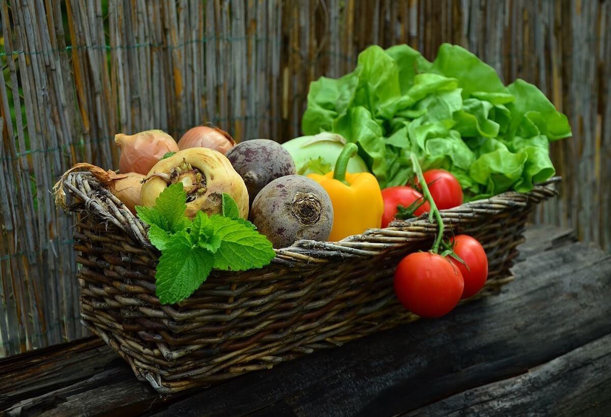 건강식 채소